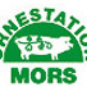 ks-mors-logo